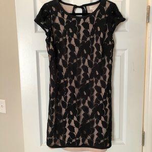 Loft Outlet Lace Sheath Dress